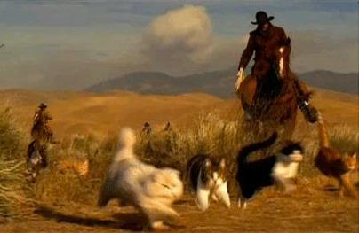 Cowboys hearding cats